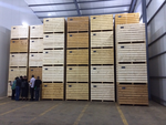 HortIMPACT's Feasibility Study on Ware Potato Storage Shows a Business Case