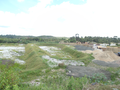 Treatment plant construction - The grass planted in every slope is growing fast