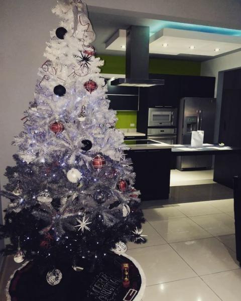 Albero Di Natale Con Sfumature Dal Nero Al Grigio Alla Punta Bianca