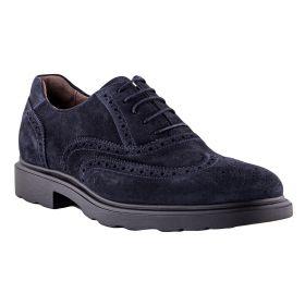 Zapatos Hombre Nero Giardini 1130U