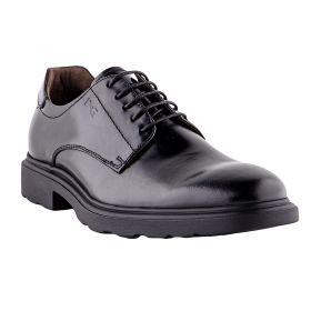 Zapatos Hombre Nero Giardini 1141U