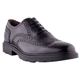Zapatos Hombre Nero Giardini 1151U