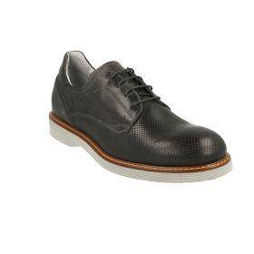 Zapatos Hombre Nero Giardini 1462U