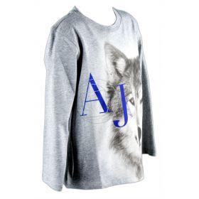 Camiseta Niño Armani Junior 6X4T22-4J09Z (Azul-01, 5-años)