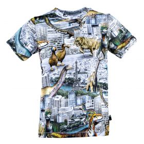 Camiseta Niño Molo S19A230