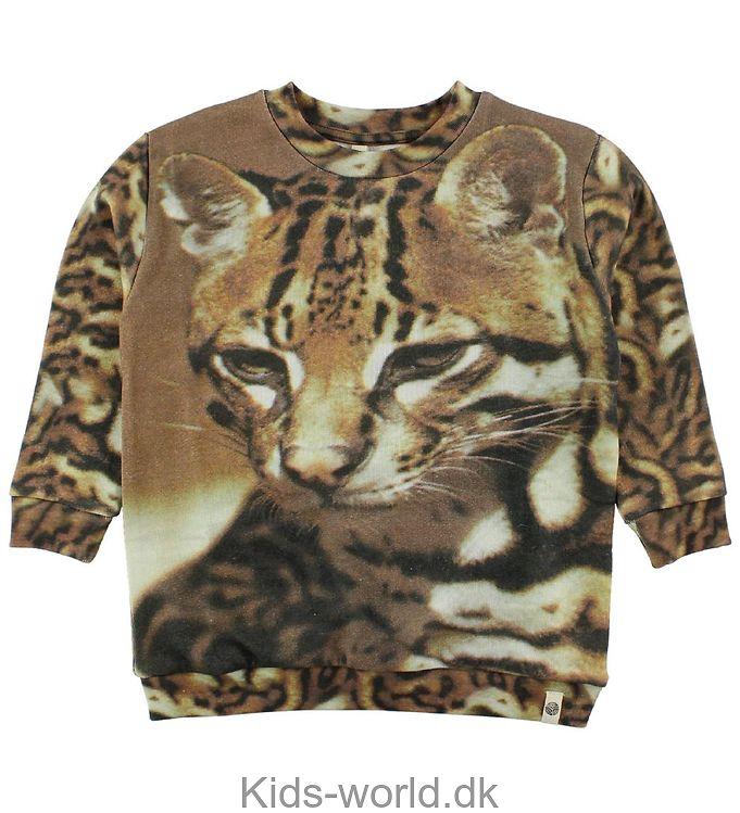Popupshop Sweatshirt - Bengalsk Kat