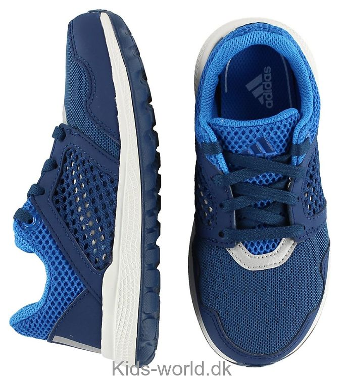 adidas Performance Sko - Energy Bounce - Navy