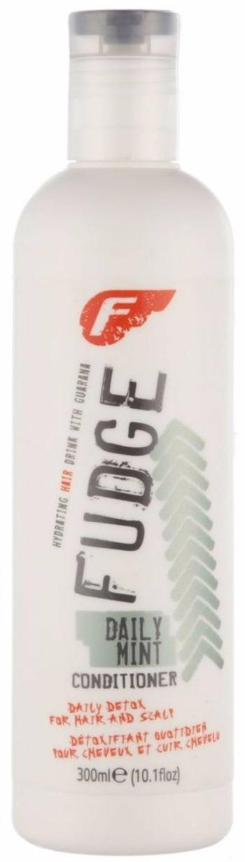 Fudge Daily Mint Conditioner 300 ml (U)
