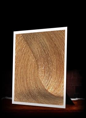 Osmo Ikon Permanent Hair Colour 100 ml. - (9.3) Very Light Golden Blonde