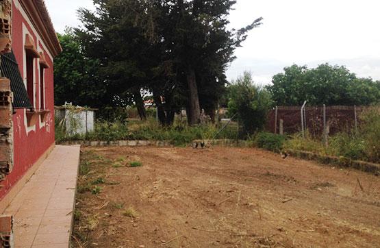 CAMIÑO DE LA MALEZA, Chiclana de la Frontera
