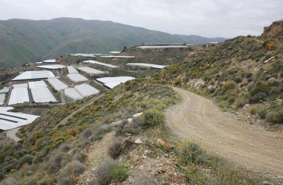 Pago de Gálvez (Sitio La Cenáfrica)-, Albuñol