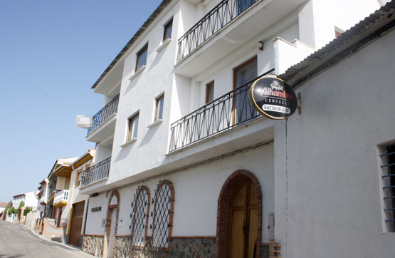 Venta de casas y pisos en Arenas del Rey Granada