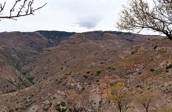 Paraje CORTIJO DEL CURA, POLIGONO 7 PC 383 , Polopos, Granada