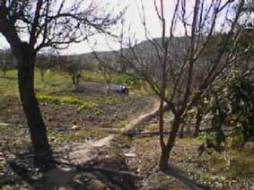 Colonia RUMBLAR- PARAJE PALOMARES 0 , Guarromán, Jaén