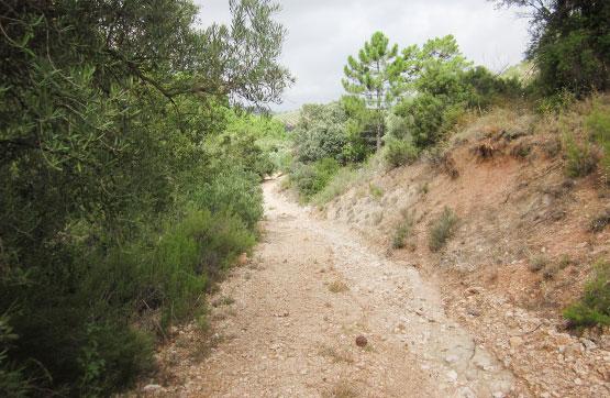 Calle FUENTE SALADA Y ALMOTEJAS POL.4 0 228, Beas de Segura, Jaén