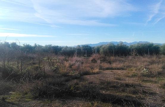 Paraje MINA DE LA HIGUERA S/N, POLIGONO 24 PARCELA 38 0 0, Torreperogil, Jaén
