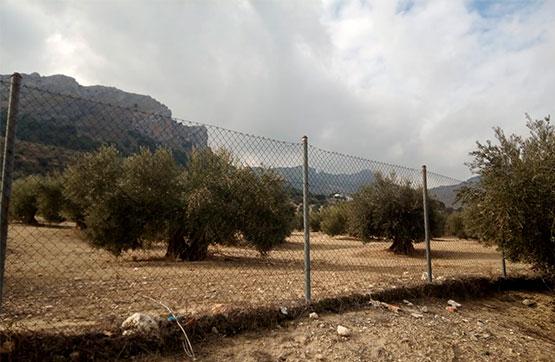 Paraje QUEBRADA S/N, POLIG 33, PARCELA 56 0 , Jaén, Jaén