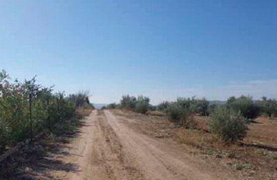 Paraje CERRO CABAÑAS PG.4 PC.437 Políg. 4 0 P 437, Arjona, Jaén
