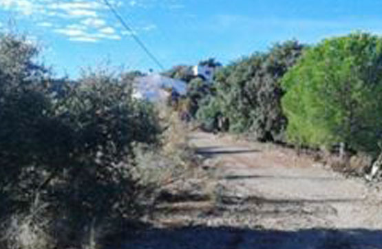 Plot, Land  for sale    en Comares