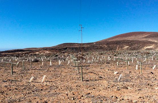 Centro LAS ERAS, PC 103, POLIG 1 59 , Arico, Santa Cruz de Tenerife