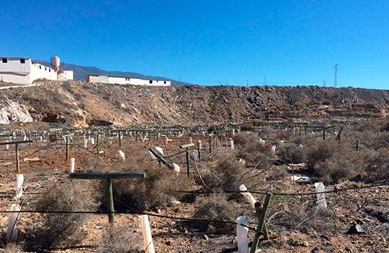 Parcela en venta en Arico