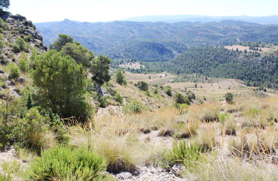 Pasaje REGIDOR Y POCICAS 3 , Yeste, Albacete