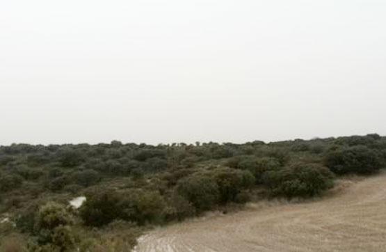 Terreno en venta con 51260 m2,  en Almaluez
