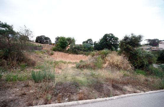 Calle LA SELVA, POLIG 29 PARC 29, Maçanet de la Selva