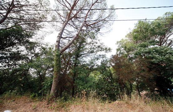 Calle Junta de Compensación-, Maçanet de la Selva