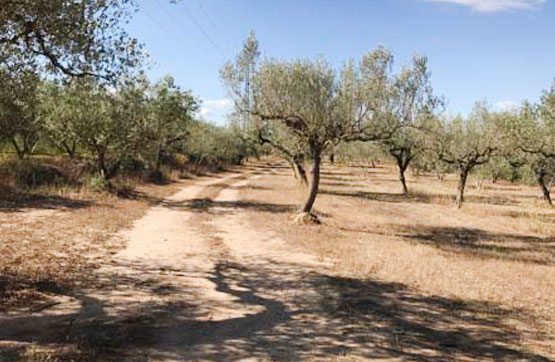 Polígono 14 PARCELA 65, POLIG 15 PARCELAS:13,14,15 Y 16 0 , Garcia, Tarragona