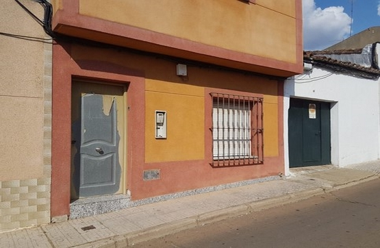 Calle CORONEL FERNANDEZ GOLFIN, Almendralejo