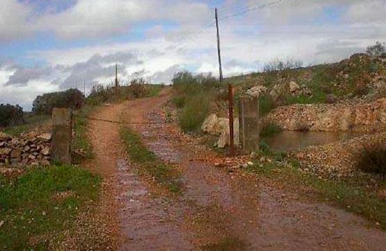 Centro LA NAVA S/N, POLIGONO 7 0 0, Almendral, Badajoz