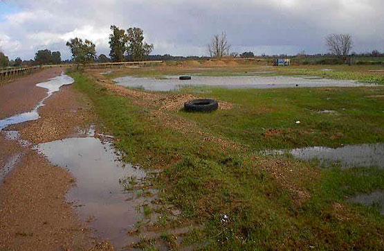 Lugar OZONA REGABLE LOBONPOLIG 182 PARC 47 - BADAJOZ POLG. 182 0 P 47, Badajoz, Badajoz