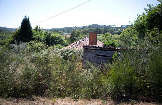 Centro VISTA ALEGRE, Mesía