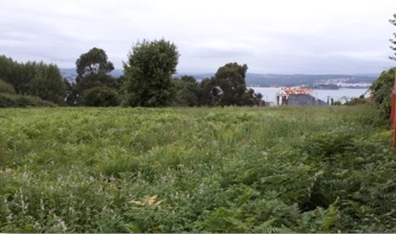 Centro ARNELA 0 , Sada, A Coruña