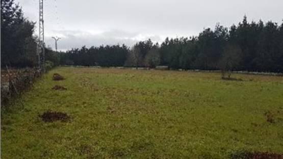 Paraje SANTA ANA 0 0, Outeiro de Rei, Lugo