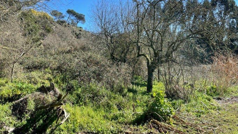 Urbanización BERROCANES.AREA DE REPARTO 20-E,PARCELA A 0 , Ourense, Ourense