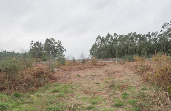 Centro CHAN DE EVARISTA (LG VALDAMOR XIL), Meaño
