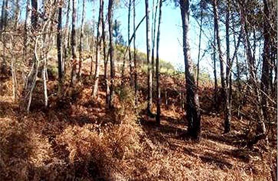 Centro PARROQUIA SABAJANES, PG 72 PC 507 0 , Mondariz, Pontevedra