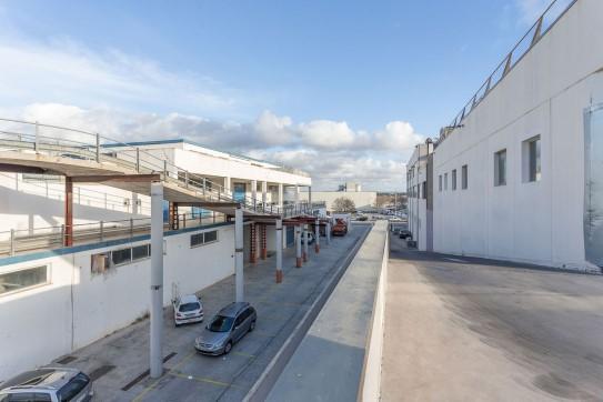 Calle Can Calafat 53 , Palma de Mallorca, Islas Baleares