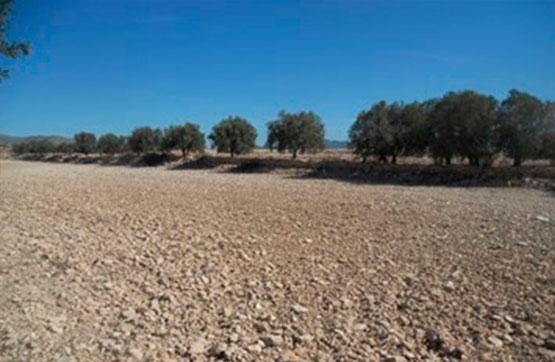 Paraje LOS MESEGUERES PG158 PC.109 PARTE HCDA.LOS AGUADOS 0 , MARTÍNEZ DEL PUERTO (LOS), Murcia