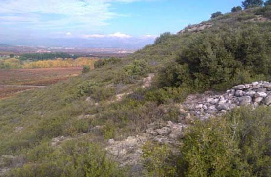 Paraje LA POVEDA, POLIG 12, PARCELA 193 0 , Lapuebla de Labarca, Álava