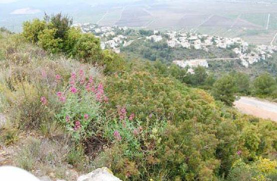Terreno en Denia, Alicante