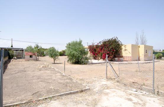 Paraje PTDA DE ALTET, POLG. 1, POL-134 PAR-70 1033 33, Elche/Elx, Alicante