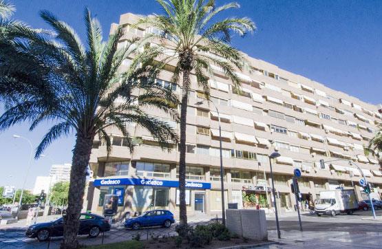 Shop in Alicante (Ciudad), Alicante