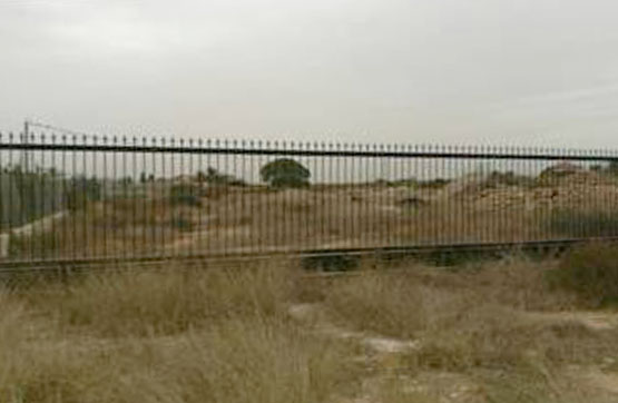 Land en Elche, Alicante
