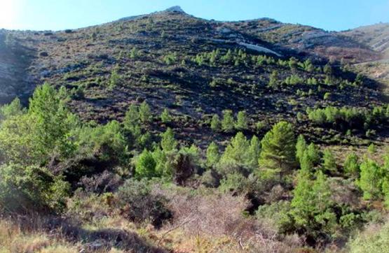 Paraje CARRASCAL S/N, POLIG 5, VARIAS PARCELAS 0 , Parcent, Alicante