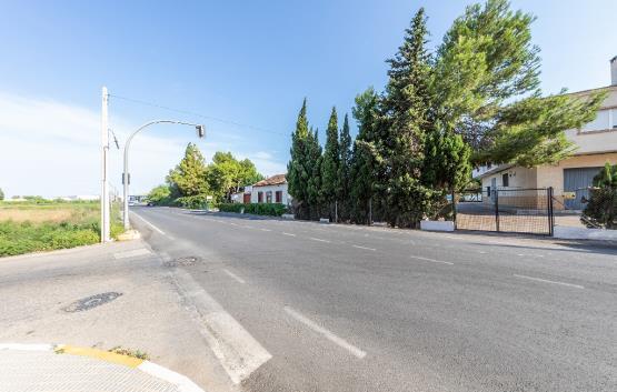 Avenida DAYA NUEVA -1 24, Almoradí, Alicante