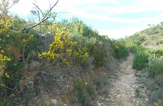Pasaje TITONARES. POL 18, PARCELA 53 0 , Segorbe, Castellón