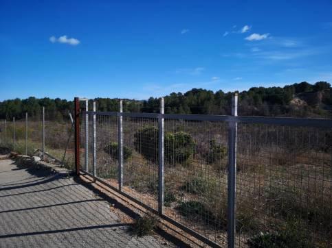 Partida TOSSAL PG.13 0 , BARCHETA, Valencia